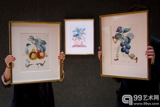 达利14件水果习作水彩画中的《水果穿孔》(左)、《樱桃皮埃罗》(Pierrot Cherries,中)、《匆忙的李子》(Hasty plum、右)