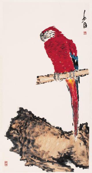 金刚鹦鹉68cm136cm2011年