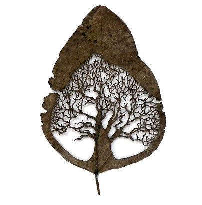 相对以纸为材的民间剪纸,许多人觉得剪树叶是个新鲜事物,其实,这是