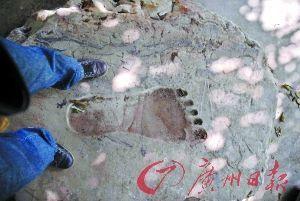 清远峡山发现巨大石刻足印。