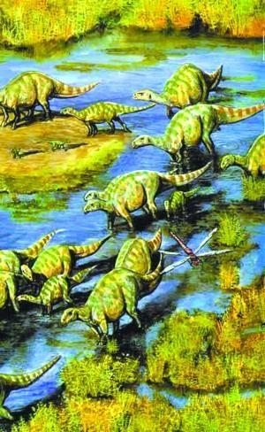 25亿年前一种像鳄鱼的槽齿动物进化出来的