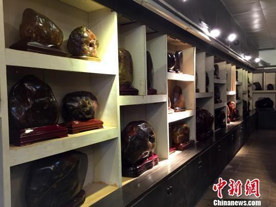 圖為桂林一家奇石館內的雞血玉藏品。楊陳 攝