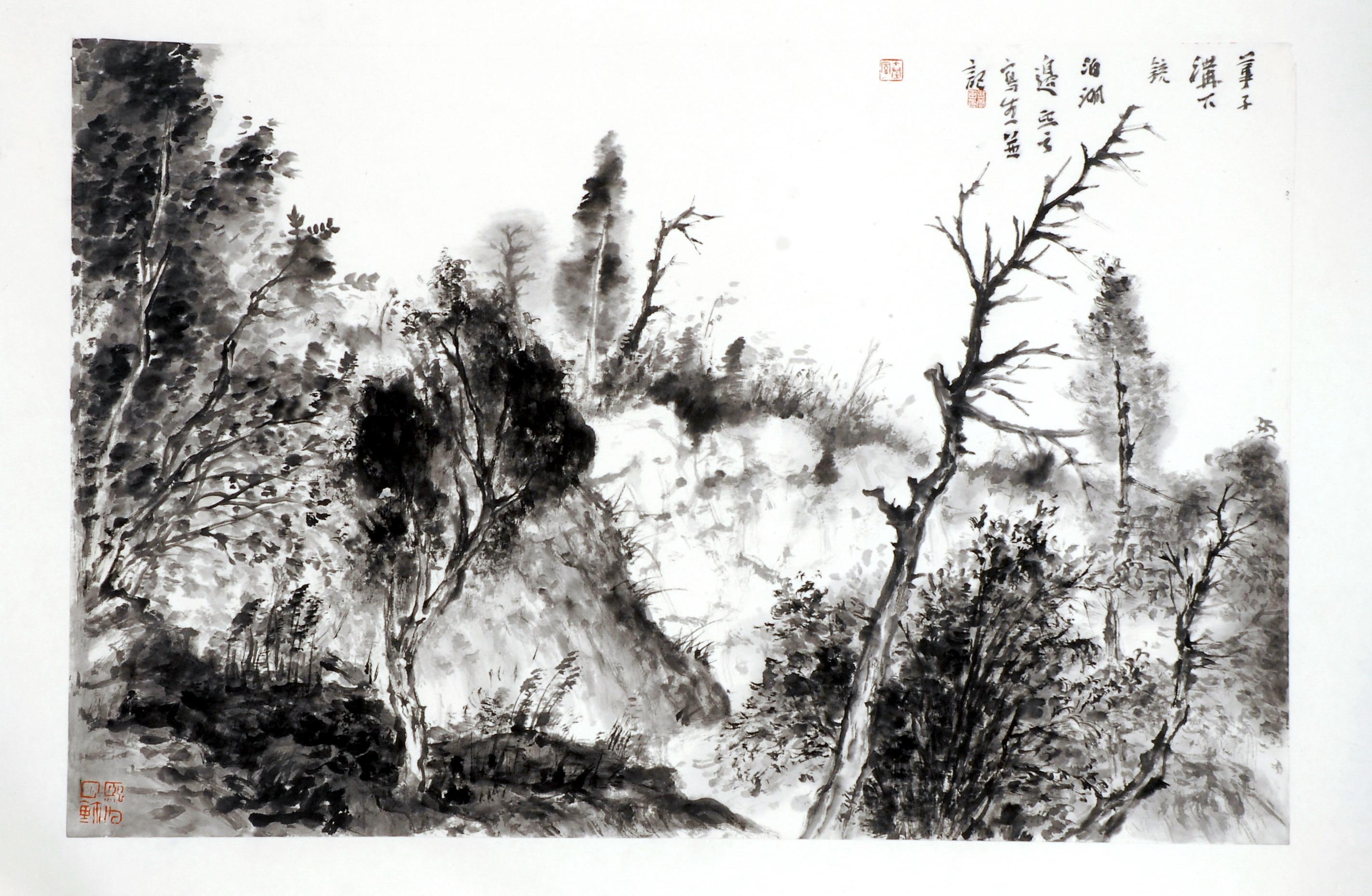 山水世界是非常独特的,他来自国画艺术家付熙云的笔下,独特的黑白转换图片