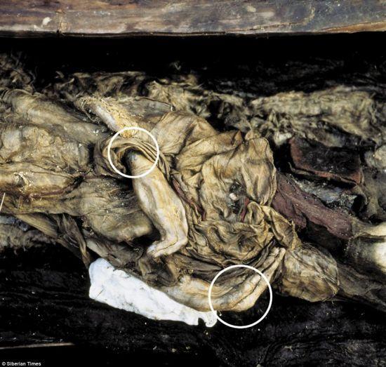 乌科克公主的手腕上纹有纹身。19年前,科学家将她的遗骸从永冻土中挖出。据悉,乌科克公主将在阿尔泰对外展出