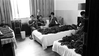 卖家租数十间客房当铺面:床上堆卖花梨木