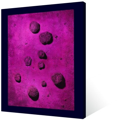 伊夫·克莱因 蓝玫瑰 综合材料 199×153×16cm 1960年 (伦敦佳士得供图)
