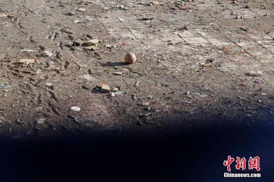 故宫护城河清淤现场图片