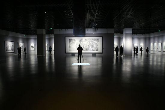 """""""生命•墨语—张江舟水墨艺术展""""展厅现场"""